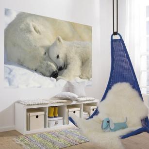 komar-foto-tapete-polar-bears