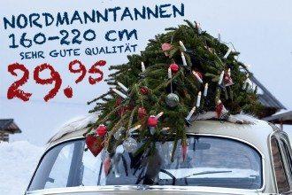 Sehr guter Preis für Nordmanntannen sehr gute Qualität bei kwp Baumarkt