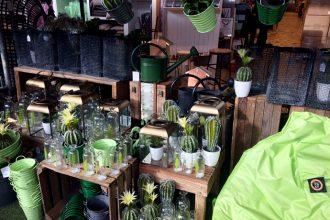 Gartenausstellung mit neuen Gartenmöbeln und Wohnaccessoires bei Kwp Baumarkt