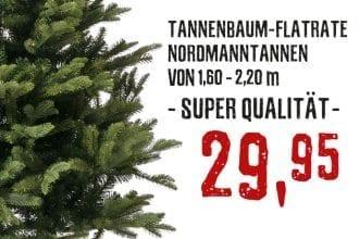 1A Nordmanntannen