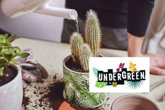 Undergreen Pflanzenpflege